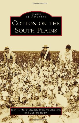 cotton-on-the-south-plains-images-of-america