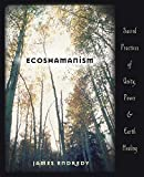 Endredy, James: Ecoshamanism: Sacred Practices of Unity, Power &amp; Earth Healing