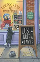 Lost Under a Ladder (A Superstition Mystery)…