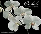 Perry, Clay: Orchids 2005 Calendar