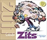 Scott, Jerry: Zits: 2011 Day-to-Day Calendar