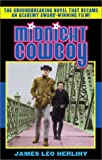 Herlihy, James Leo: Midnight Cowboy
