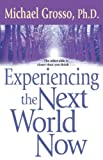 Grosso, Michael: Experiencing the Next World Now