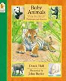 Hall, Derek: Baby Animals : Five Stories of Endangered Species