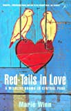 Marie Winn: Red-tails in Love: A Wildlife Drama in Central Park