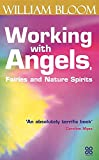 Bloom, William: Working with Angels, Fairies and Nature Spirits