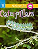 Greenaway, Theresa: Caterpillars (Minibeast Pets)