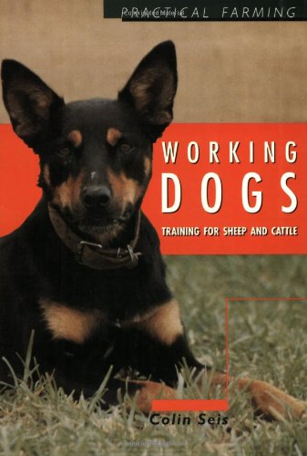 working-dogs-training-for-sheep-and-cattle-practical-farming