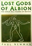 Newman, Paul: Lost Gods of Albion: The Chalk Hill Figures of Britain
