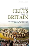 Morse, Michael A: How the Celts Came to Britain : Druids,Skulls and the Birth of Archaeology