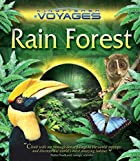 Rain Forest by Jinny Johnson