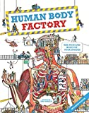 Green, Dan: Human Body Factory: The Nuts and Bolts of Your Insides