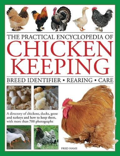 the-practical-encyclopedia-of-chicken-keeping-breed-identifier-rearing-care