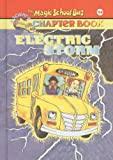 Capeci, Anne: Electric Storm (Magic School Bus Science Chapter Books (Pb))