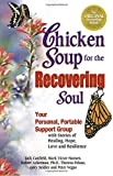 Ackerman, Robert: Chicken Soup for the Recovering Soul: Your Personal, Portable Support Group with Stories of Healing, Hope, Love and Resilience (Chicken Soup for the Soul)
