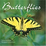 Badger, David P.: Butterflies