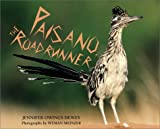 Dewey, Jennifer: Paisano, the Roadrunner