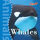 Greenberg, Dan: Whales (Benchmark Rockets)