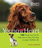 Alderton, David: Young at Heart: 120 Things You Can Do Right Now to Give Your Older Dog a Longer, Healthier Life