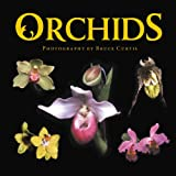 Curtis, Bruce: Orchids