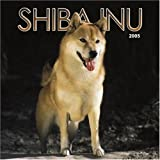 Not Available: Shiba Inu 2005 Calendar