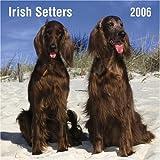 Not Available: Irish Setters 2006 Calendar