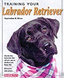 Morn, September B.: Training Your Labrador Retriever