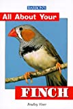 Viner, Bradely: All About Your Finch