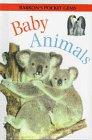 Somerville, Louisa: Baby Animals (Pocket Gems Series)