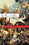 Rudy Rucker: As Above, So Below: A Novel of Peter Bruegel
