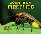 Zoom in on Fireflies (Zoom in on Insects!)…