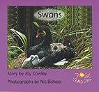 Swans by Joy Cowley