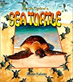 The Life Cycle of a Sea Turtle by Bobbie…