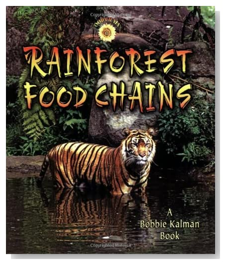 +food+chains+for+kids
