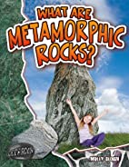 What Are Metamorphic Rocks? (Let's…
