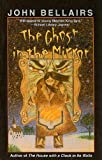 Bellairs, John: The Ghost in the Mirror (Puffin Chillers)