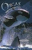 Hopkins, Ellen: Orcas: High Seas Supermen (Cover-To-Cover Books)