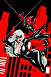 Smith, Kevin: Spider-Man / Black Cat: The Evil That Men Do (Amazing Spider-Man)