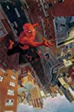 Jenkins, Paul: Spectacular Spider-Man Vol. 3: Here There Be Monsters