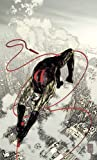Brian Michael Bendis: Daredevil Vol. 11: Golden Age
