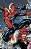 Millar, Mark: Spider-man: The Last Stand