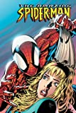 Straczynski, J. Michael: Amazing Spider-man: Until the Stars Turn Cold