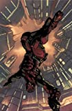 Kirkman, Robert: Marvel Knights 2099