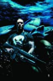 Ennis, Garth: Punisher MAX Vol. 6: Barracuda (v. 6)
