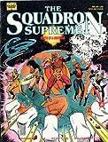 Gruenwald, Mark: Squadron Supreme: Death of a Universe (Squadron Supreme (Unnumbered))