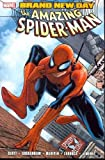 Slott, Dan: Spider-Man: Brand New Day, Volume 1[ SPIDER-MAN: BRAND NEW DAY, VOLUME 1 ] by Slott, Dan (Author) Oct-29-08[ Paperback ]