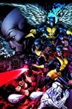 Carey, Mike: X-Men: Legacy - Divided He Stands