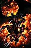Craig Kyle: X-Force Vol. 3: Not Forgotten