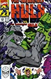 Peter David: Incredible Hulk Visionaries - Peter David, Vol. 6