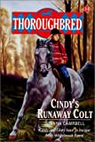 Campbell, Joanna: Cindy's Runaway Colt (Thoroughbred)